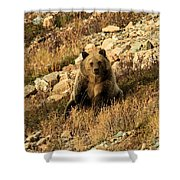 You Whistling At Me? Shower Curtain