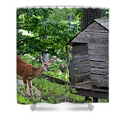 Young Buck At Treehouse Hopatcong Shower Curtain