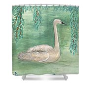 Young Swan Under Willow Tree Shower Curtain