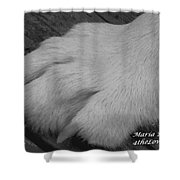 Young Wolf Paw Shower Curtain