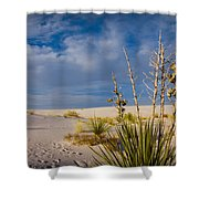 Yucca 1 Shower Curtain
