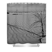 Yucca 2 Shower Curtain