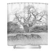 Zebra And Tree Shower Curtain