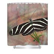 Zebra Longwing Butterfly-3 Shower Curtain