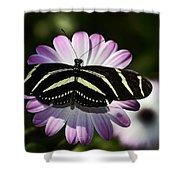 Zebra Longwings Shower Curtain