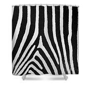 Zebra Stripes Shower Curtain