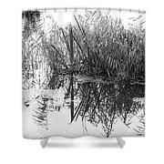 Zen Pond Shower Curtain