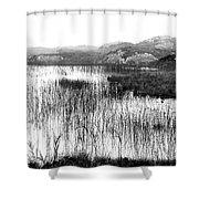 Zen Pond In Ireland Shower Curtain