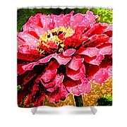 Zinnia Blast Shower Curtain