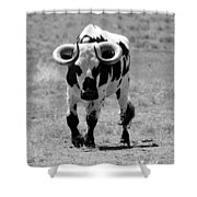 Zion Bull IIi Shower Curtain