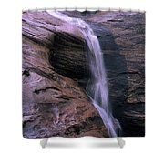 Zion Summer Waterfall Shower Curtain