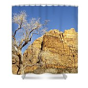 Zion Winter Sky Shower Curtain
