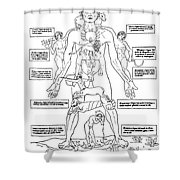 Zodiac Man, Medical Astrology Shower Curtain