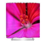 Zonal Geranium Named Tango Neon Purple Shower Curtain