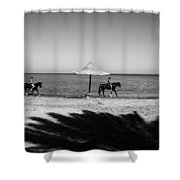 2 3 Shower Curtain