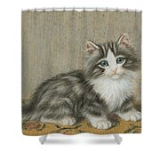 A Kitten On A Table Shower Curtain
