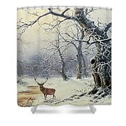 A Stag In A Wooded Landscape  Shower Curtain