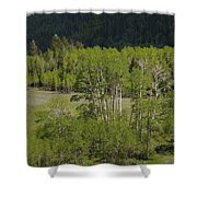 Aspen Meadows IIi Shower Curtain