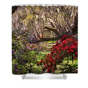 Azaleas In Oak Trees Shower Curtain by Ken Barrett