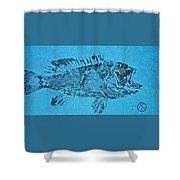 Black Sea Bass - Rockfish - Grouper Shower Curtain