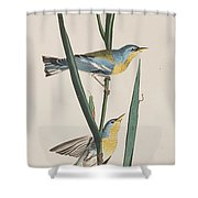 Blue Yellow-backed Warbler Shower Curtain
