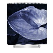 Boy Flower Shower Curtain