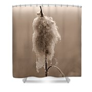 Broadleaf Cattail 2 Shower Curtain