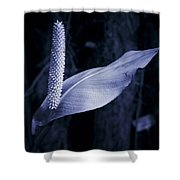 Calla 2 Shower Curtain