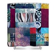 Composition Abstraite Shower Curtain