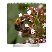 Cuckoo Bumblebee Shower Curtain