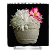 Desert Rose   Chrysanthemum And Adenium Obesum Shower Curtain