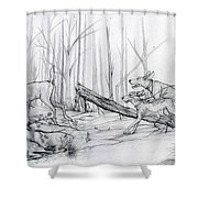 Desperate Diversion Shower Curtain
