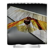 Eastern Amber Dragonfly 3d Shower Curtain