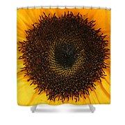 Florets Shower Curtain