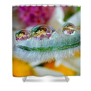 Friendly Company Of Rain Droplets On A Flower Cereal Shower Curtain