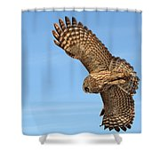 Great Gray Owl Plumage Patterns In-flight Shower Curtain