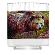 Grizzly Bear In Rocks Shower Curtain