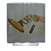 Growing To Be Grown Shower Curtain