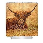 Happy Highlander Shower Curtain