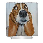 Hound Dog Eyes Shower Curtain