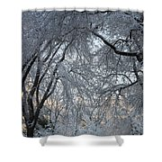 Ice Storm On The 6th II Shower Curtain