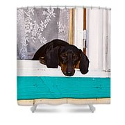 I'd Like To Walk Shower Curtain