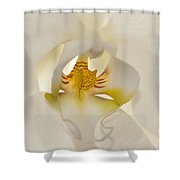 In The Heart Of The Orchid Shower Curtain