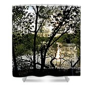 In The Shadows  - No. 430 Shower Curtain