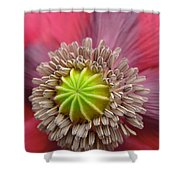 Inner Most Poppy Shower Curtain