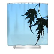 Lacy Birch Leaf Shower Curtain