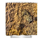 Lakescape 1 Shower Curtain