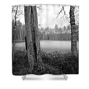 Liesilampi 3 Shower Curtain