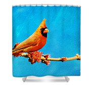 Male Northern Cardinal Perched On Tree Branch Shower Curtain