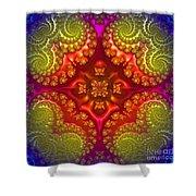 Mandala For Awakening The Creative Energy Shower Curtain